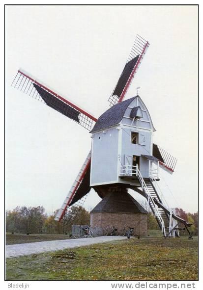 OLEN (Prov. Antwerpen) - Molen/moulin - De Pas Opgerichte Buulmolen, Opgezeild En In Werking (herfst 2003). - Olen