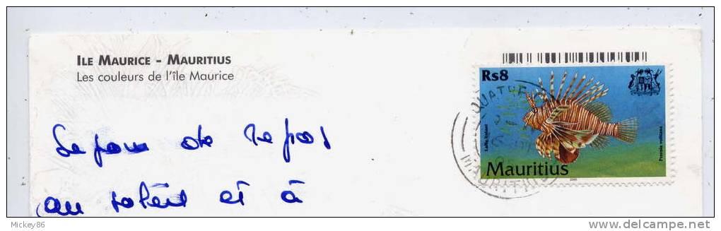 """Ile Maurice--2005--timbre Poisson""""Laffe Volant"""" Seul Sur Carte Postale--Ile Maurice --vues Diverses - Maurice (1968-...)"""