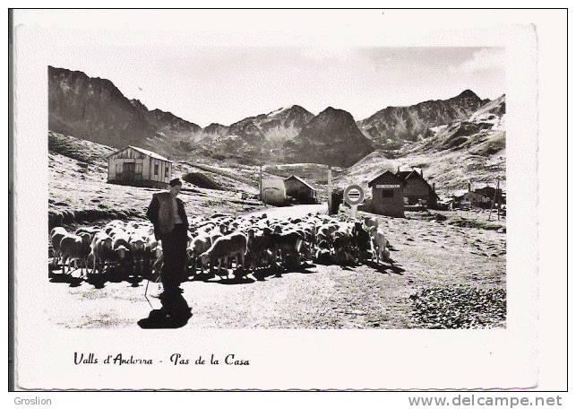 VALLS D'ANDORRA 300 TRANSHUMANCE  AU PAS DE LA CASA  (ALT 2091 M) BERGER ET TROUPEAU - Andorra