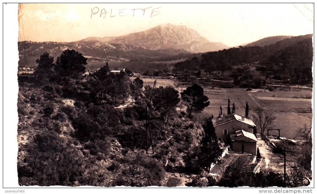 Cpsm 13 Environs D'Aix En Provence Palette Les Artauds, Dans Le Fond La Montagne Sainte Victoire 1964 - Aix En Provence