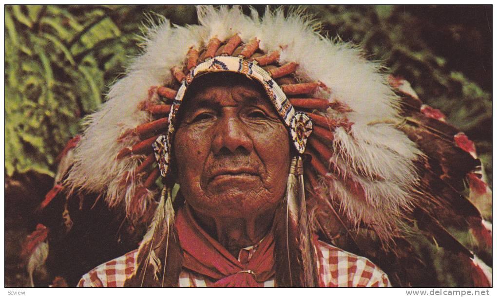 southeastern creek indians essay