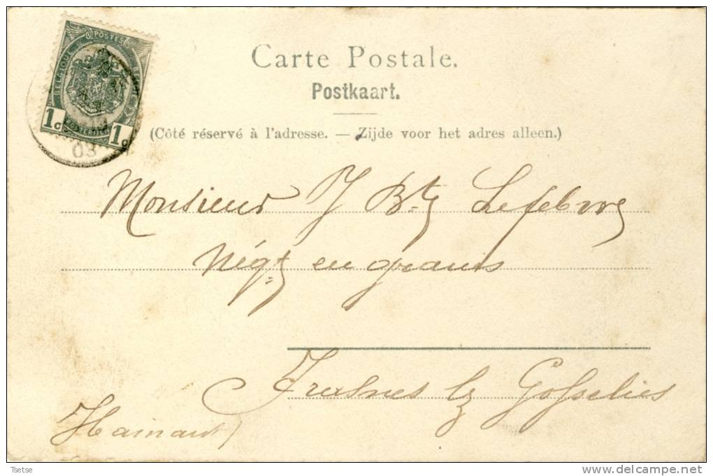 Lier / Lierre - Vue Du Spui -1903 ( Verso Zien ) - Lier