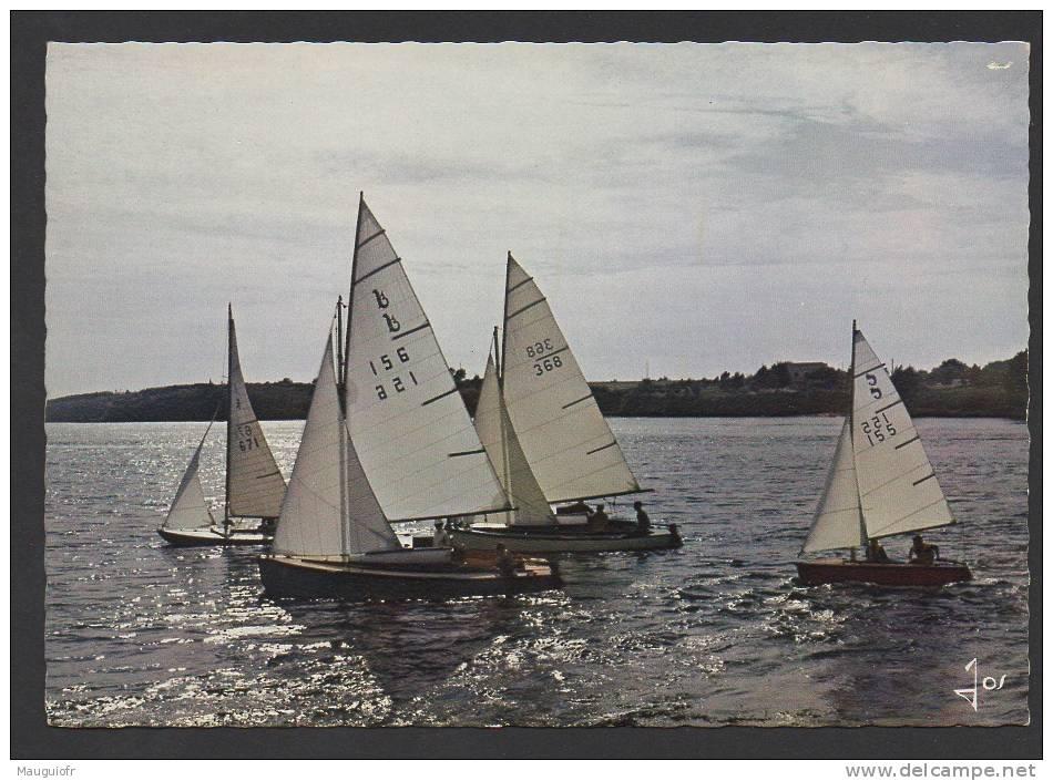 DF / TRANSPORTS / BATEAUX / VOILIERS / VOILIERS DEVANT L' ILE AUX MOINES ( MORBIHAN ) - Sailing Vessels