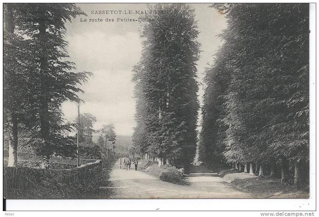 SASSETOT LE MAUCONDUIT - La Route Des Petites-Dalles - France