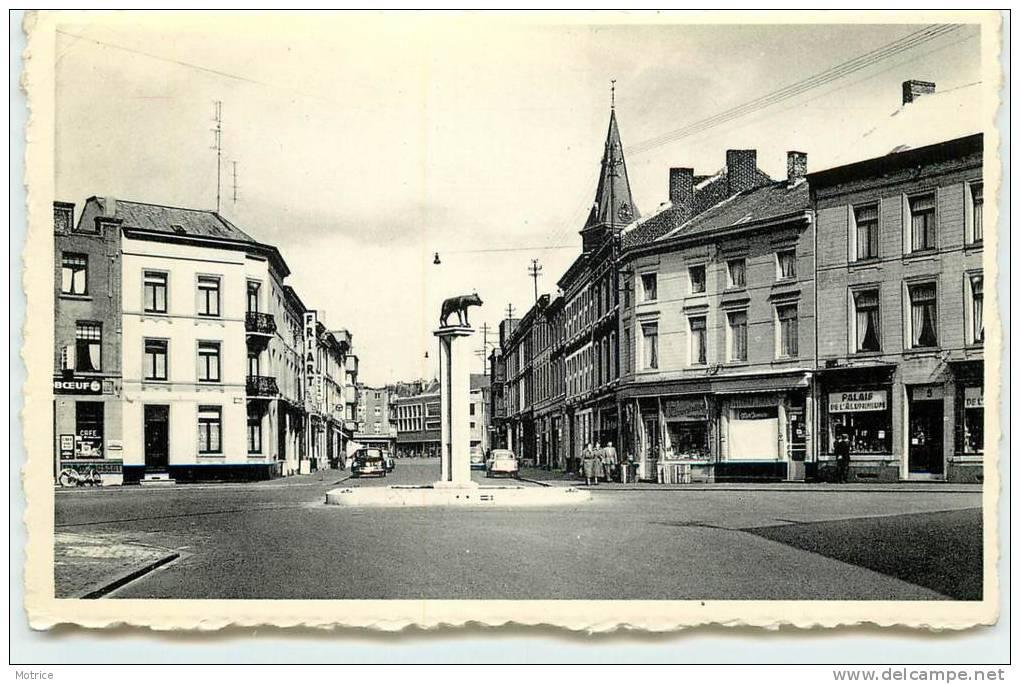 LA LOUVIERE  -  Place De La Fontaine. - La Louvière