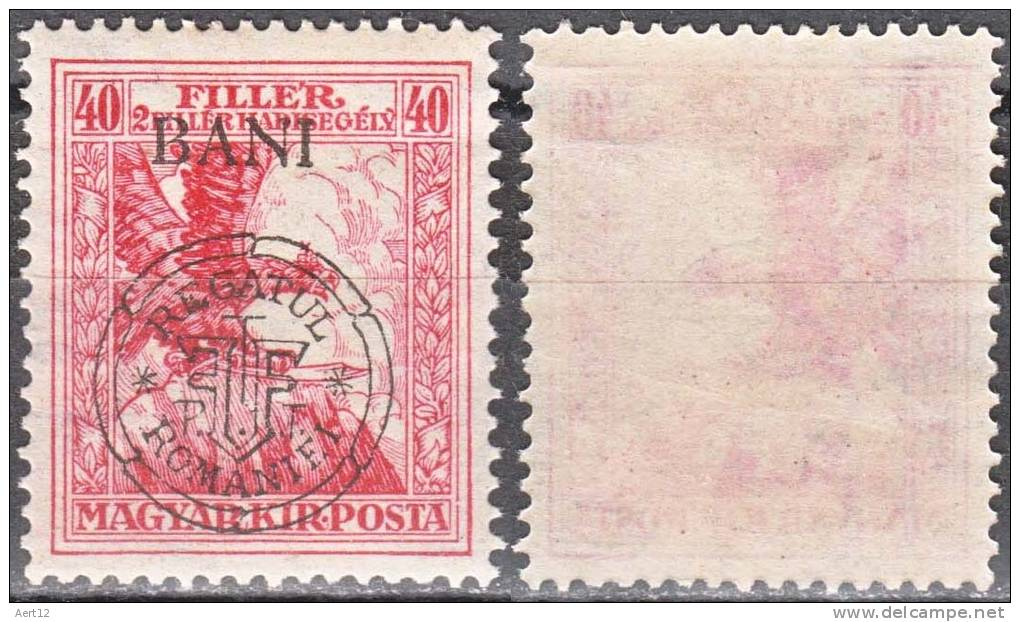 HUNGARY, 1919, Eagle With Sword,  Issued In Kolozsvar, Overprinted In Black, SEMI-POSTAL STAMPS, Sc/Mi 5NB13 / RO_25I - Unused Stamps