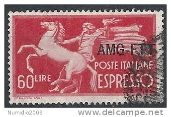 1950 TRIESTE A USATO ESPRESSO 60 LIRE - RR11339-2 - 7. Triest