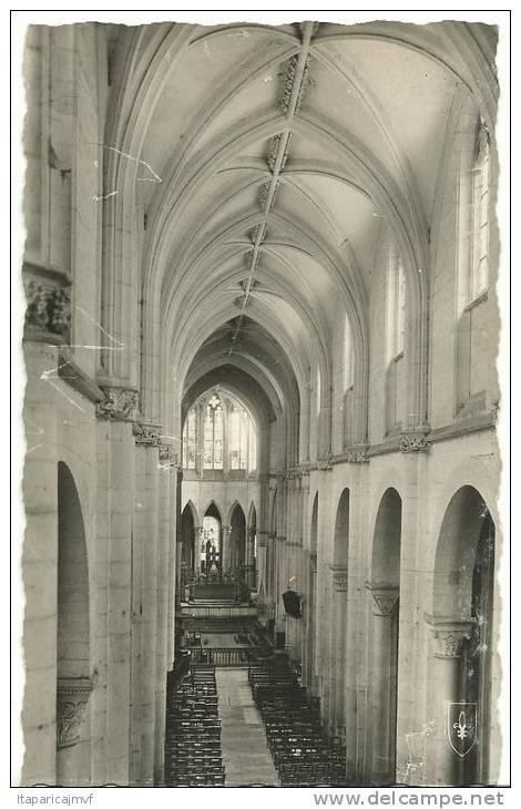 R : Allier :  SOUVIGNY  :  Nef  Centrale De La  Basilique - France