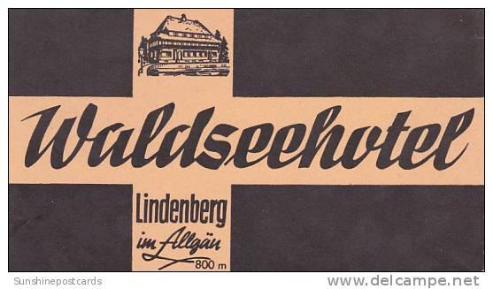 GERMANY LINDENBERG WALDSEEHOTEL VINTAGE LUGGAGE LABEL - Hotel Labels