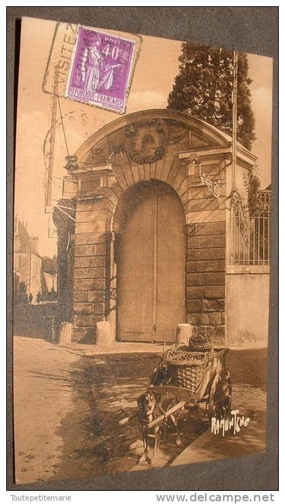 Thouars - Attelage De Chien - Thouars