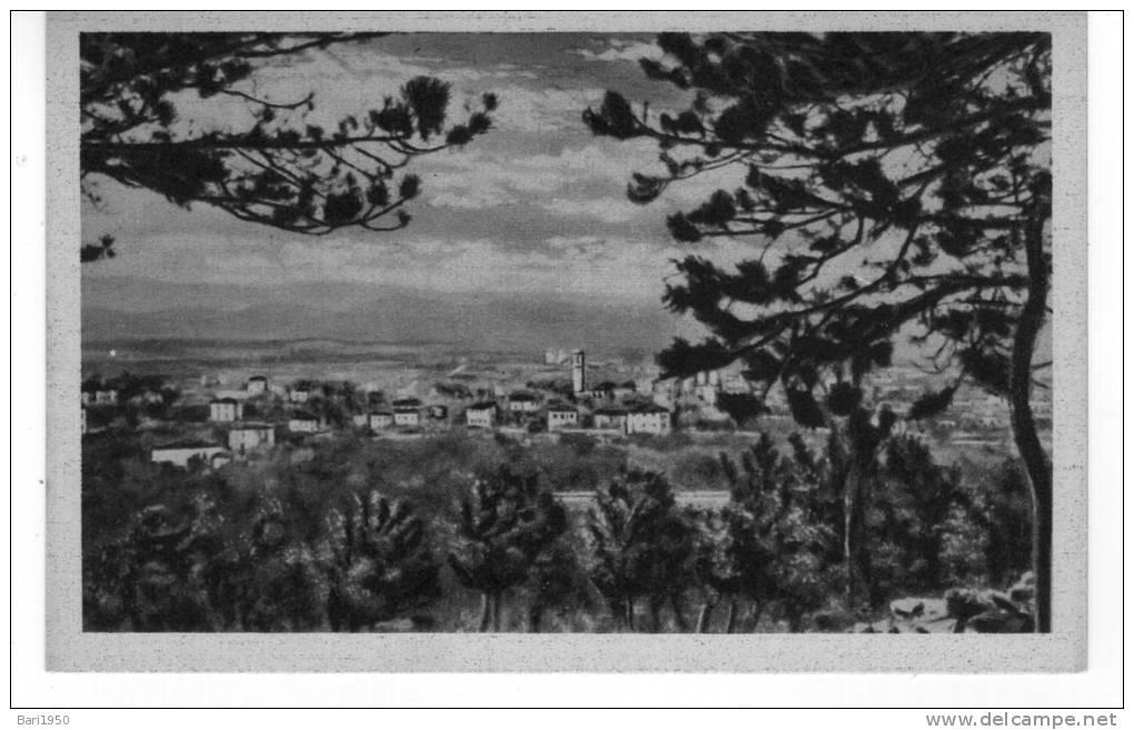 TRIESTE -  Poggioreale (Villa Opicina) Panorama - Trieste