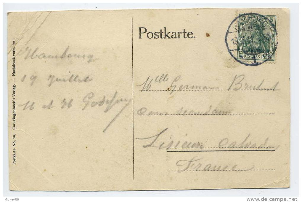 Allemagne--STALLINGEN-HAMBURG--1911----Elleberen Im Nordland Panorama Carl Hagenbeck´s Tierpark --Ours Polaire-Zoo------ - Stellingen