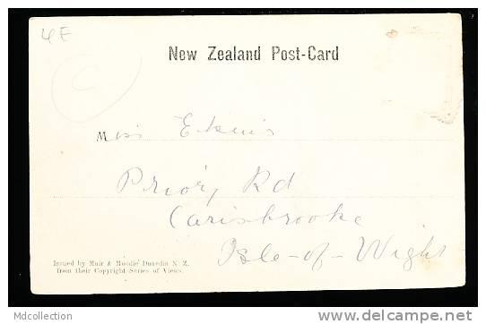 NOUVELLE ZELANDE DIVERS / The Wanganui River / - Nouvelle-Zélande