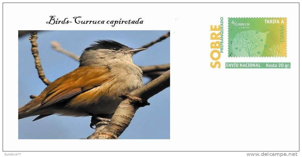 BIRDS-AVES 17 - Birds