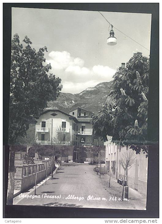 CARPEGNA ( Pesaro-urbino) Albergo Olisse Cartolina  Viaggiata 1958 - Italia