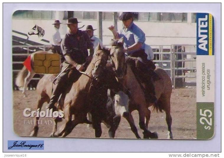comprar caballos criollos: