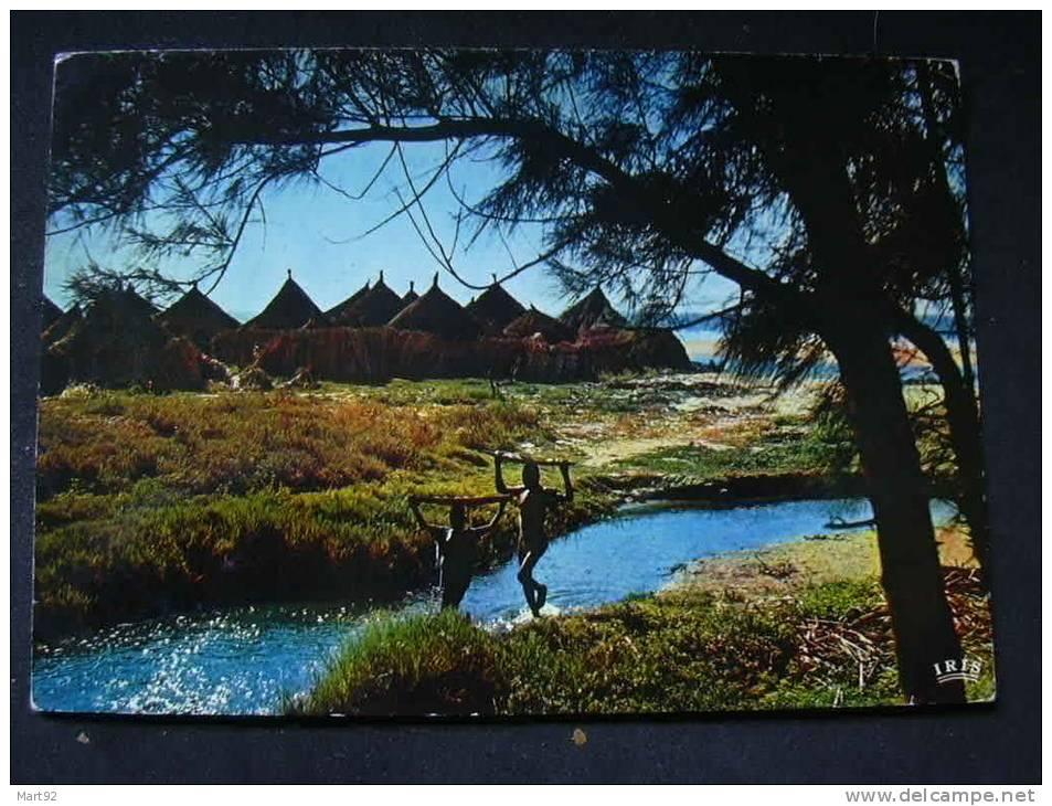 VILLAGE AFRICAIN IRIS 4050 - Unclassified