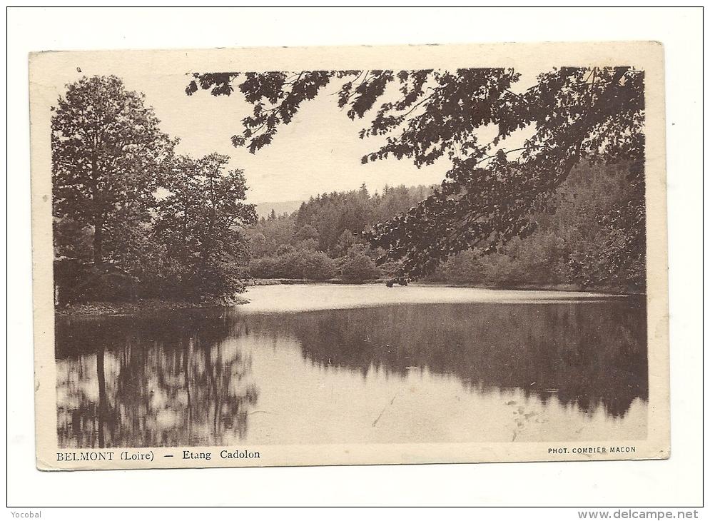 Cp, 42,Belmont, Etang Cadolon, écrite 1946 - Belmont De La Loire