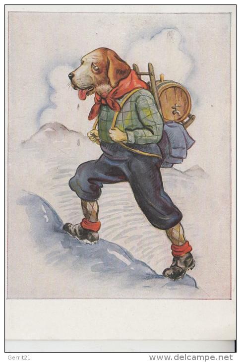 TIERE - HUNDE - BERNHARDINER - Humor Bergsteiger - Hunde
