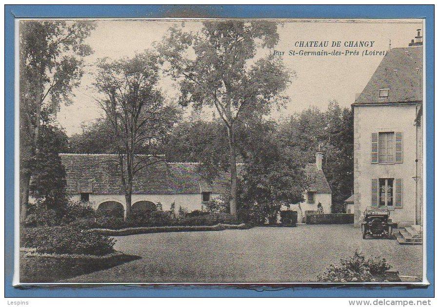 45 - CHANGY -- Château De... -   Par St Germain Des Prés - France