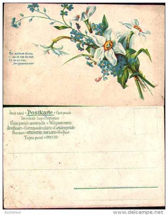 Narcisses Et Myosotis - Bloemen, Planten & Bomen