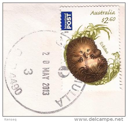 Australia 2013 Used Cover Echidna - Brieven En Documenten