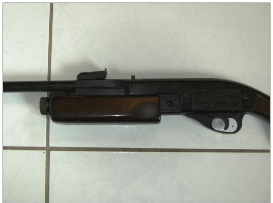 Rare carabine de jardin a plomb gamo g 1200 systeme for Carabine de jardin