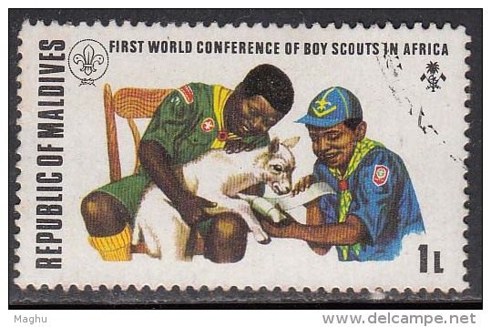 Maldives Used Scouts In Africa, First Aid To Animal. Health, - Unclassified