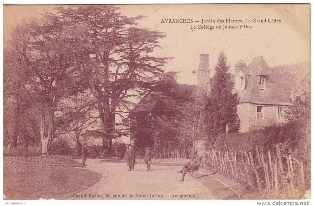 50 - Avranches - Jardin Des Plantes - Le Grand Cedre - Le College De Jeunes Filles. - Avranches
