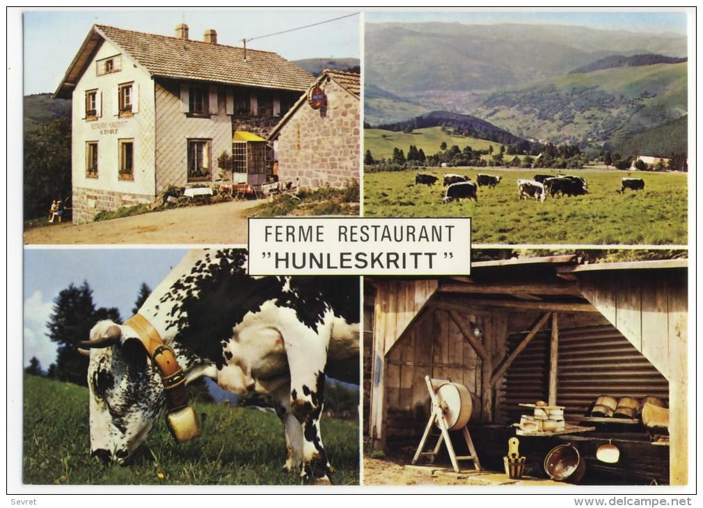 """SONDERNACH. - Ferme-Restaurant"""" HUNLESKRITT"""".    CPM - Other Municipalities"""
