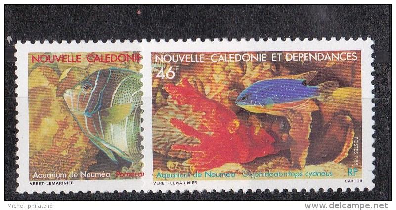 Nouvelle-Calédonie N° 551 - 552** - Nueva Caledonia