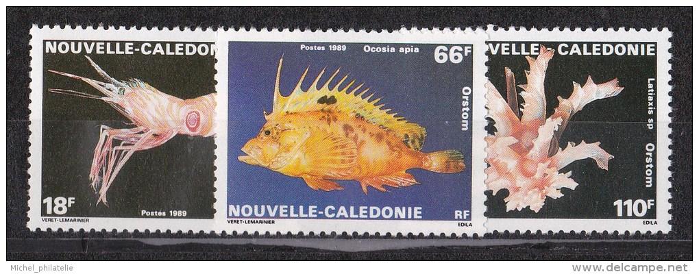 Nouvelle-Calédonie N° 576 à 578** - Nuevos