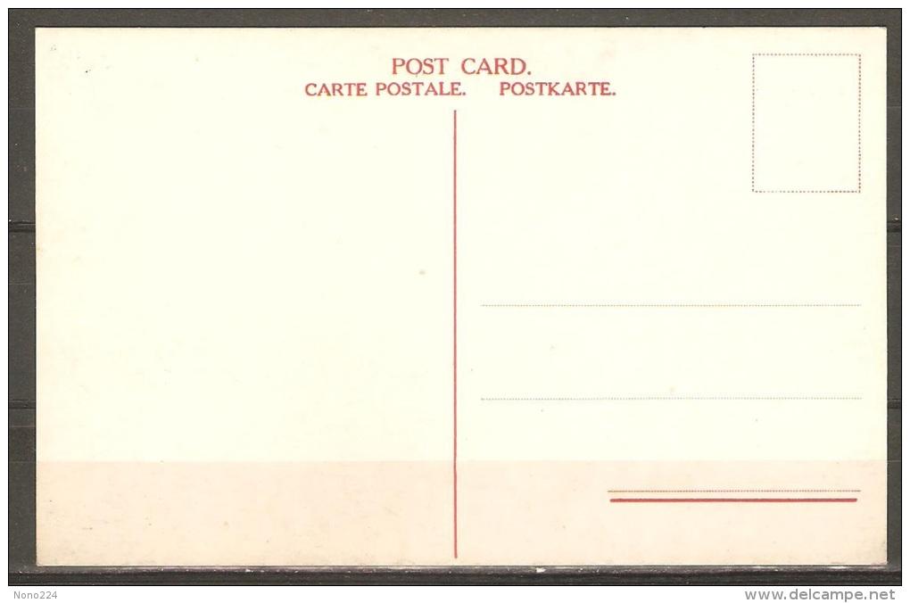 Carte Postale ( Paquebot Lapland ) - Paquebots