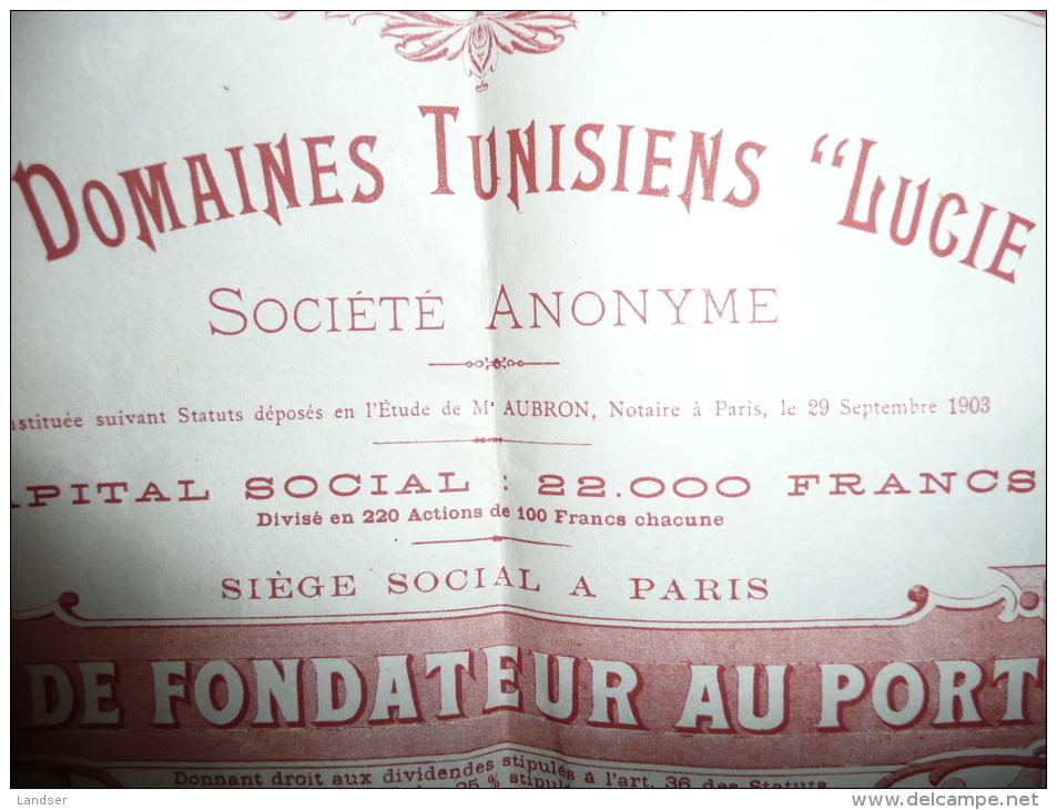 """Societe Des Domaines Tunisien """"lucie Et Anna"""" 1904 - Afrique"""