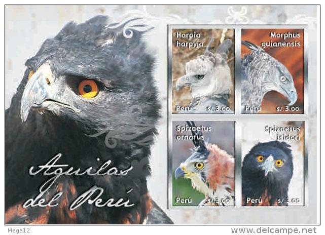 Peru 2013  Birds Eagles Hawks - Peru