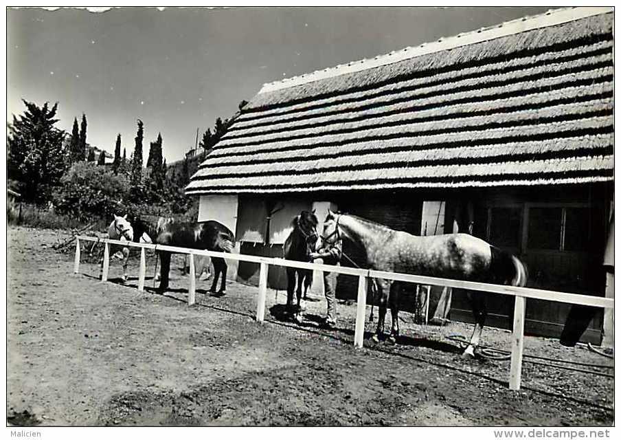 Bouches Du Rhone -gd Format -ref K760-oustau De Baumaniere -le Manege Du Club De Carita -cheval -chevaux - - France