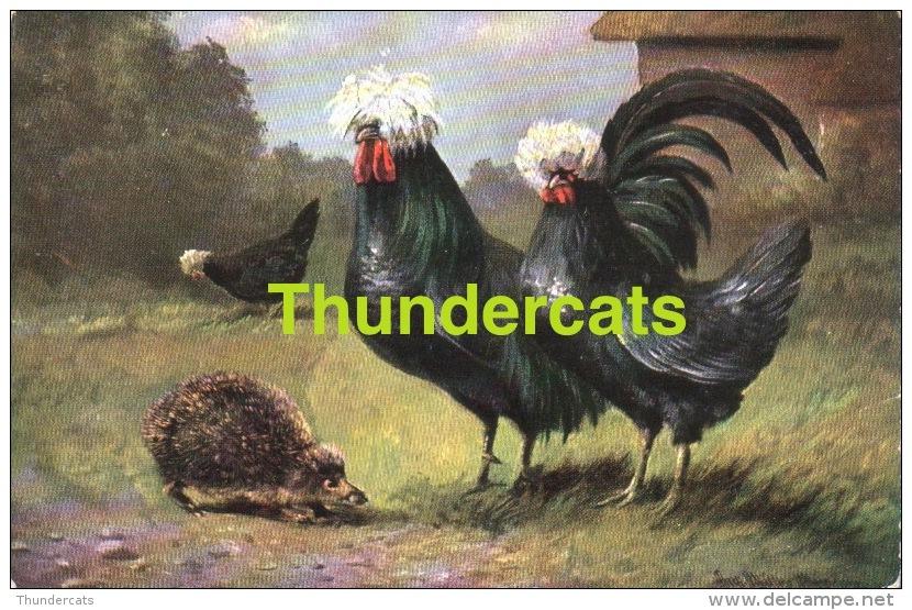 CPA ILLUSTRATEUR OISEAU  POULE COCK HERISSON  ** MULLER MUNCHEN  ** ARTIST SIGNED CARD  BIRD  COCK CHICKEN HEDGEHOG - Mueller, August - Munich