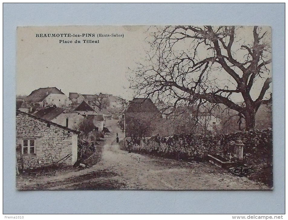 BEAUMOTTE-LES-PINS (70): Carte Postale Ancienne  Place Du Tilleul - Francia