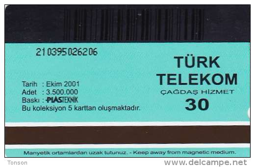 Turkey, N-204, Engravings, Arzuhalci, 2 Scans. - Türkei