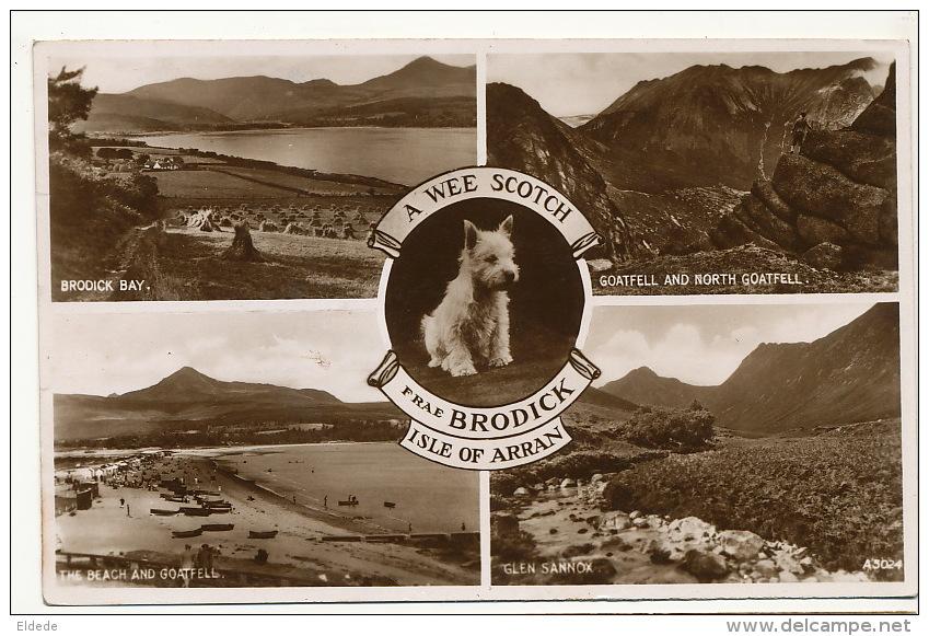 Isle Of Arran A Wee Scotch Frae Brodick  Glen Sannox P. Used Brodick 1948 Scottish Terrier - Ayrshire