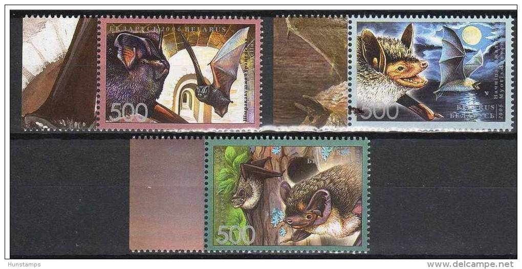 Belarus 2006. Animals / Birds Bats Set MNH (**) - Oiseaux