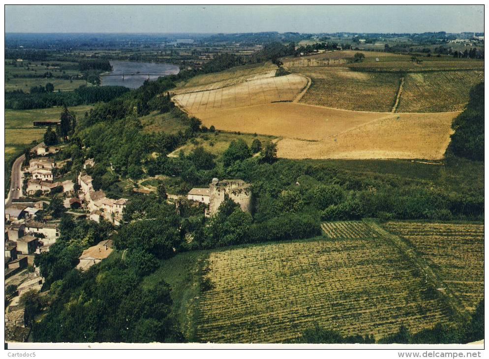 Langoiran  Vue Aérienne. Le Château Féodal Et Perspective Sur La Garonne   Cpsm Format 10-15 - France