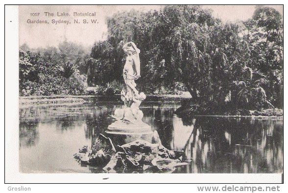 THE LAKE BOTANICAL GARDENS .SIDNEY 1057        1908 - Sydney