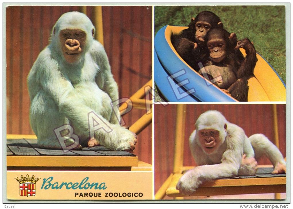 Barcelone (Espagne) - Singes Du Parc Zoologique - Singes