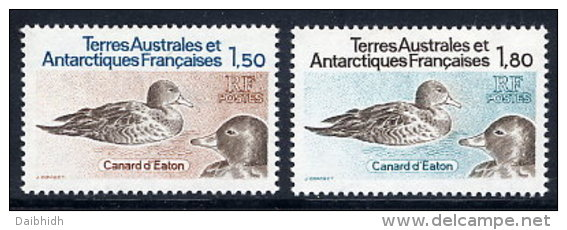 FRENCH ANTARCTIC (TAAF) 1983 Pintails Set Of 2 MNH / **.  SG 172-73 - Unused Stamps
