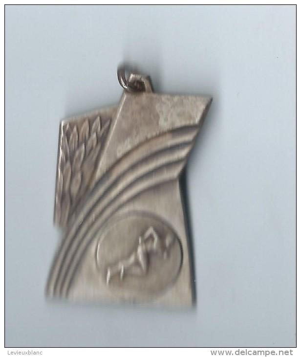 Médaille Sportive / Course à Pied / Années Soixante        SPO57 - Athlétisme