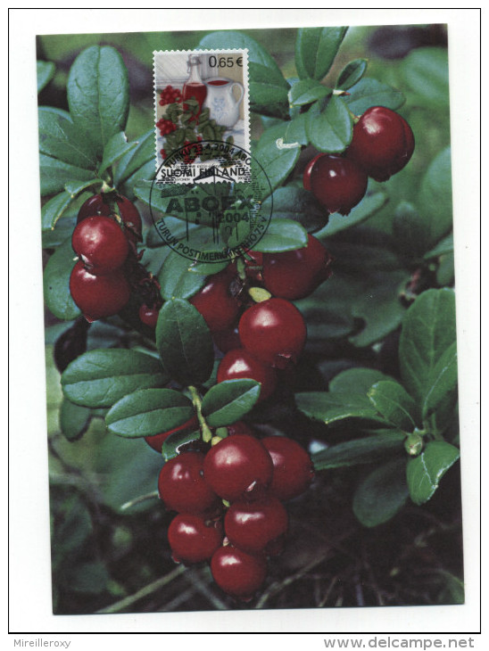 CARTE MAXIMUM FINLANDE FRUIT GROSEILLE - Frutta