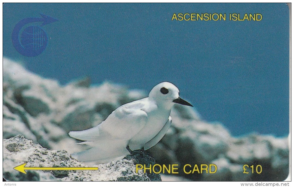 ASCENSION ISL.(GPT) - Fairy Tern, CN : 3CASB, Tirage 5000, Used - Ascension (Insel)