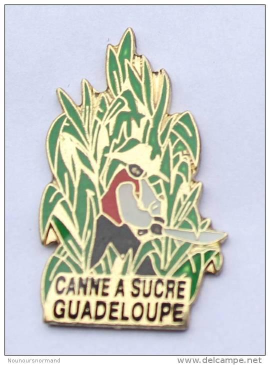 Pin's De La GUADELOUPE - Récolte De La Canne à Sucre -  D253 - Administrations