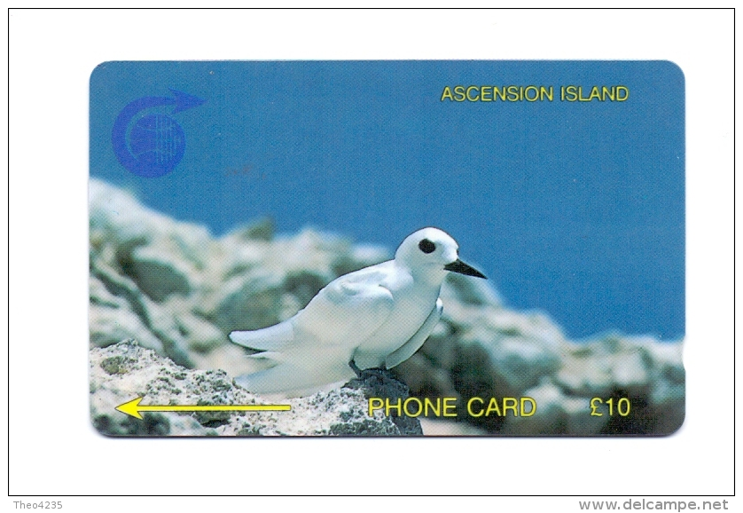 ASCENSION ISLAND PHONECARD(GPT) FAIRY TERN ,3CASB- 5000pcs-1/92-USED - Ascension (Insel)